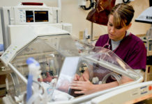pros and cons of neonatal nursing
