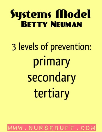 Systems Model by Betty Neuman