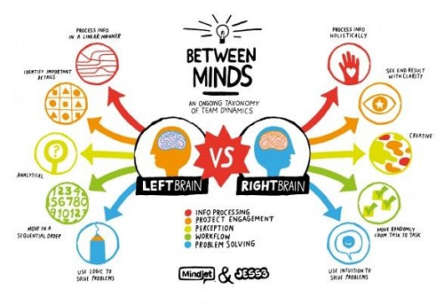 functions and characteristics of left and right brain 5 types of learners study tips for nursing students nursebuff
