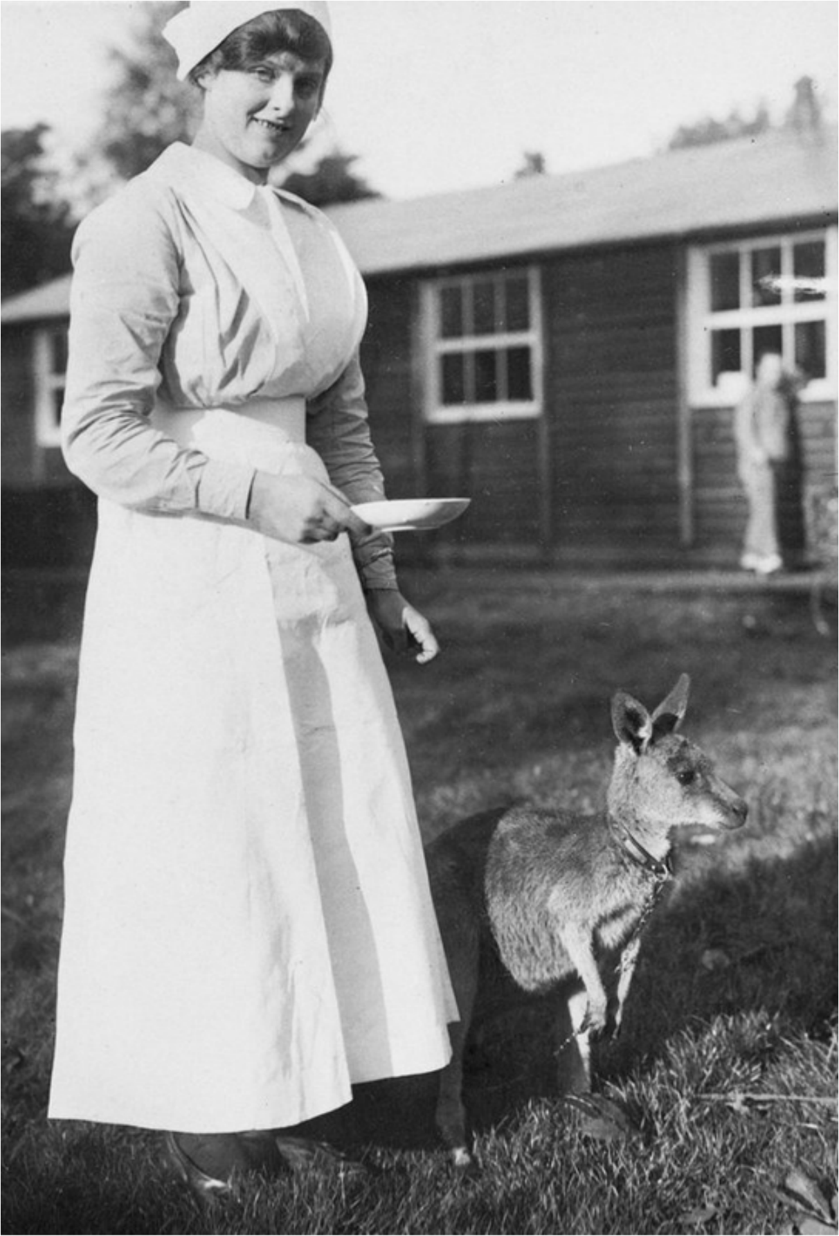 nurse and kangaroo