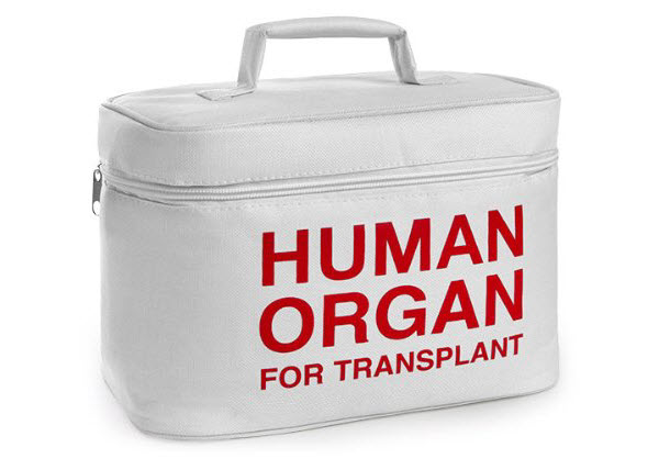human organ transplant lunch box