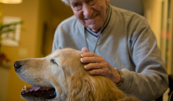 pet therapy nursing home