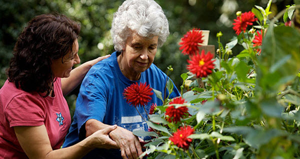 horticultural therapy social arm