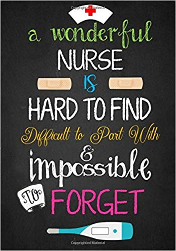 nurse journal