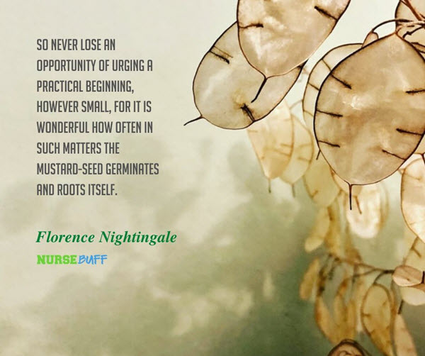 florence nightingale opportunity quotes