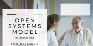 nursing models and theories
